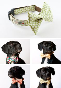 I have made bow ties for the boys...never thought of making one for Lucky? I can totally see him in a red bow tie!!