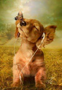 :) Listen to some tunes!!