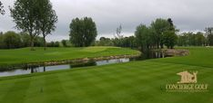 Golf Ireland at Adare Manor Golf Resort. The Hole par 3 and avoid hitting the ball in the water! Golf Ireland, Adare Manor, Most Luxurious Hotels, Golf Tour, Tour Operator, Golf Courses, Tours, Vacation, Water