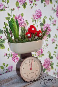 My flower arrangement My Flower, Flowers, Home Deco, Flower Arrangements, Planter Pots, Christmas, Xmas, Floral Arrangements, Home_decor