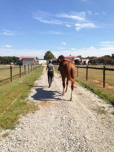 Emily and Paris, University of Georgia Equestrian