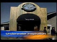 #Wyland CBS Early Show
