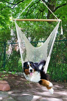 Relaxing!!!!!!!