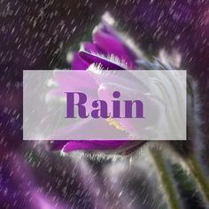Rain, Raindrops on Roses, Umbrellas, clouds, storms, lightening