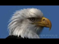 WE ARE AMERICANS - A Soldier's Pledge (Ronald Reagan)