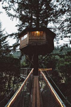 jrxdn:   Tree House | Instagram | Facebook