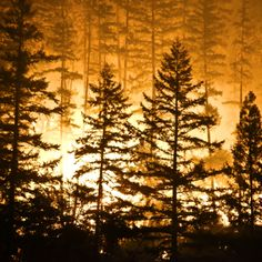 Canadian Fire as Large as Rhode Island -- KingstoneInvestmentsGroup.com