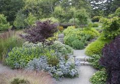 Another garden heavy on contrasting foliage with accents of color provided by blue Salvia and Eryngium (from Mosaic Gardens)