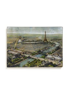 Twigs and Moss Paris Map Plate