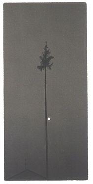 Yamamoto, Masao. A box of Ku #72
