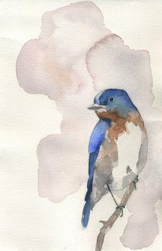 sweet eastern blue bird watercolor