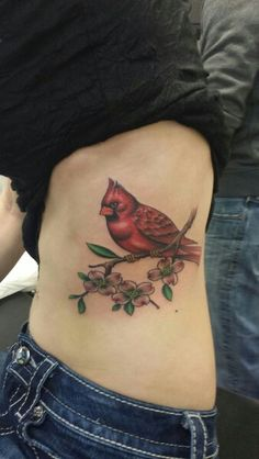 Cardinal on Dogwood by Judy Mizell | Cardinals...my favorite bird ...