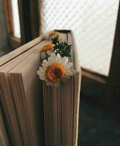 Ideas Book Photography Wallpaper For 2019