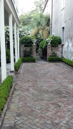 Charleston Driveway - every part of this city is so charming inviting ! Small Planter up on edge of driveway Brick Courtyard, Brick Paving, Concrete Pavers, Backyard Patio, Backyard Landscaping, Landscaping Ideas, Pavers Ideas, Café Exterior, Exterior Stairs