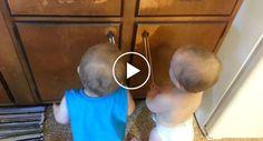 A Reação Hilariante De Dois Bebés Ao Descobrir Dois Elásticos