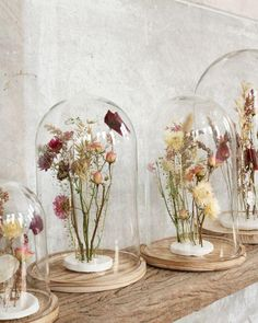 Dried flowers in clay are nice in your interior and you can easily make them yourself! - Dried flowers in clay are nice in your interior and you can easily make them yourself! Decoration Entree, Deco Nature, Wild Nature, Diy Projects For Beginners, Deco Floral, Dried Flowers, Flower Decorations, Flower Art, Diy Design