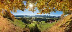 Vineyard, Blog, Outdoor, Neuschwanstein Castle, Outdoors, Vine Yard, Blogging, Vineyard Vines, Outdoor Games