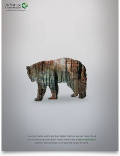 WILDLIFE by The Group Advertising, via Behance