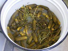 sós uborka Japchae, Paleo, Ethnic Recipes, Food, Beach Wrap, Meals, Yemek, Eten, Paleo Diet
