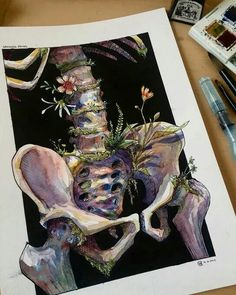 This illustration is good although not sure I could pull it off. Kunst Inspo, Art Inspo, Art And Illustration, Studio Piercing, Anatomy Art, Hip Anatomy, Wow Art, Painting & Drawing, Bone Drawing