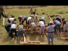Easter Island. Full-length PBS video.