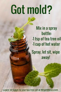 Epic and easy cleaning hacks, tips, and tricks you will find handy. Homemade Cleaning Products, Household Cleaning Tips, Deep Cleaning Tips, House Cleaning Tips, Natural Cleaning Products, Spring Cleaning, Cleaning Hacks, Diy Hacks, Green Cleaning