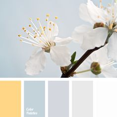 Color Palette #2768 (Color Palette Ideas)