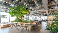 MS groen net ff anders - urban jungle Workspace Design, Office Interior Design, Office Interiors, Hotel Lobby Design, Environmental Architecture, Office Ceiling, Office Images, Office Lounge, Lobby Interior