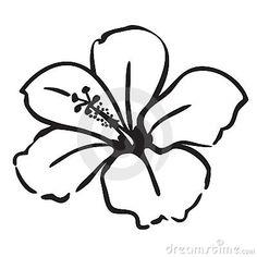 Tattoo Ideas On Pinterest Hibiscus Tattoo And Flower Tattoos