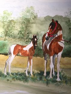 Marwari mare and foal Watercolour 25x42 cm on Clairefontaine 250 g/m² paper