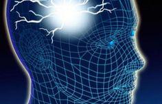 Investigadores españoles estudian en ratones una proteína neuronal que evita la epilepsia - http://gd.is/c9YaJE