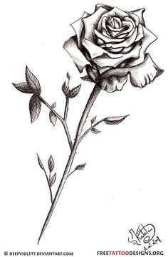 long stem rose tattoo
