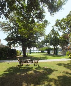 "We live in a concrete jungle and not many places in #Karachi now offer natural trees and foliage; shady lawns; and views of a #creek which @Beach_Luxury #Hotel has to offer to guests, clients and the people who work with us (please visit us at http://avari.com/property/beach-luxury & ""Like"" us on FB- https://www.facebook.com/beachluxuryhotel)"