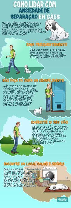 Como Lidar com Ansiedade de Separação em Cães - http://www.adorocaes.com.br/ansiedade-de-separacao-em-caes