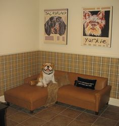 Fine Room for Fido: It's a Dog's Life at Homearama