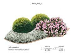 gardenage-aiuola-romatica-rosa
