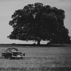 A #wedding ride in Tito's Cadillac... #brijuni #istria #lukartweddings…
