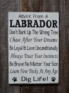 Pet Lover Custom Family Pet Sign Pets, Dog Signs Personalized, Customized Wood Sign, Canine, Dog Advice, Dog Wisdom, Animal, Family Pet