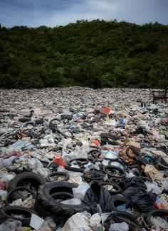 The World Wildlife Fund (WWF) estimates there are 150 million metric tonnes of plastic pollution which is disrupting marine life. But what are our role?