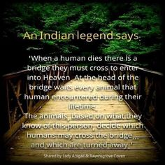 What do you think? Native American Prayers, Native American Spirituality, Native American Cherokee, Native American Wisdom, Native American History, American Indians, American Symbols, Native American Legends, Cherokee Nation