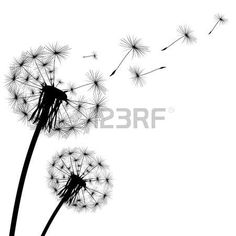 Illustration of black silhouette with flying dandelion buds on a white background vector art, clipart and stock vectors.