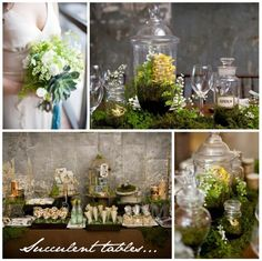 Terrarium love! makes great centerpieces that live long beyond your wedding.