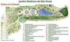 Resultado de imagem para instituto botanico são paulo