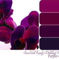 New Wedding Purple Pink Color Pallets Ideas Purple Pink Color, Pink Lila, Purple Color Palettes, Shades Of Purple, Plum Color, Dark Purple, Red Colour, Purple Palette, Purple Gold