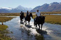 Aoraki Mt Cook Horse Trekking