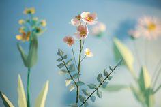 flowers, paper-cut, craft, plants, nature, secret garden, Laurianne Sainty