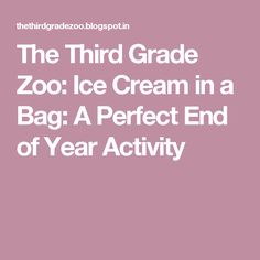The Third Grade Zoo: Ice Cream in a Bag: A Perfect End of Year Activity