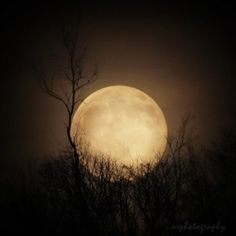 The most gorgeous moon I've ever seen!  ORphotography on Etsy.