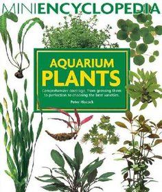 Mini Encyclopedia Series for Aquarium Hobbyists: Aquarium Plants : Comprehensive Coverage, from Growing Them to Perfection to Choosing the Best Varieties by Peter Hiscock Paperback) for sale online