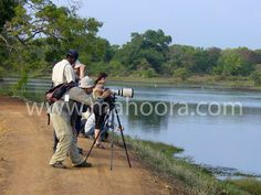 Capture the amazing wildlife at Bundala on a Mahoora Photography Safari